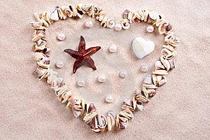 Seashells In Sand Stock Photography - Image: 15769622