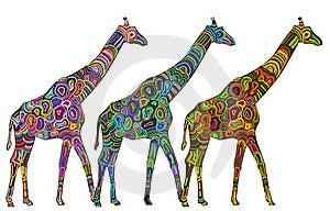 Wild Giraffes Royalty Free Stock Photography - Image: 15770277