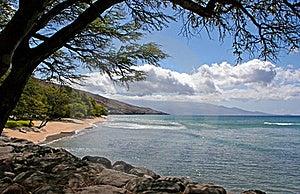Shoreline Stock Images - Image: 15777664