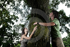 Tree Hugging Royalty Free Stock Photography - Image: 15782197