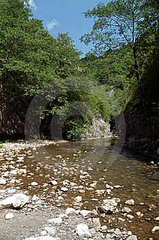 Stream Trough The Gorges Stock Photography - Image: 15792882