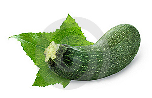 Zucchini Royalty Free Stock Photos - Image: 15799798