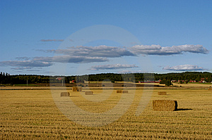 After The Harvest Stock Photo - Image: 1589850