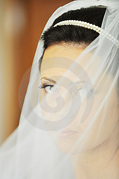 Beautiful  Bride Stock Photo - Image: 15809070