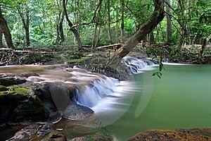 Thanbok Khoranee National Park 5 Stock Photo - Image: 15811790