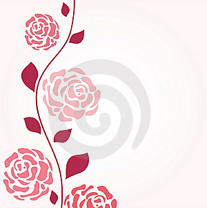 Roses Branch Royalty Free Stock Image - Image: 15830326