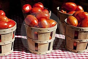 Tomatoes Stock Photography - Image: 15838392