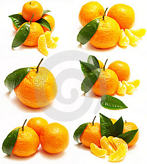 Mandarin Royalty Free Stock Photography