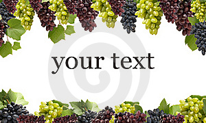 The best grades of grapes Royalty Free Stock Photo