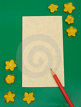 Notelet: Message Pad With Flowers. Stock Photos - Image: 15851023