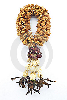 Thai Garland Dry Flower Handcraft Royalty Free Stock Images - Image: 15859069