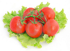 Tomatoes And Lettuce Royalty Free Stock Photo - Image: 15862805
