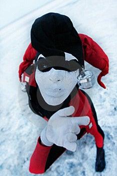 Close Up Portrait Of Gloomy Harleyquin Stock Image - Image: 15864411