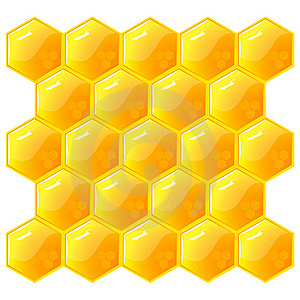 Honeycomb, Isolated On The White. Vector. Royalty Free Stock Images - Image: 15872079