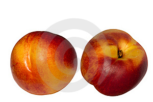 Fruit  Hybrid  Peach  Apricot  Nectarine Stock Photo - Image: 15873360