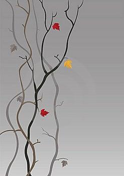 Autumn Stock Image - Image: 15877611