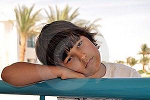 Boy Stock Photos - Image: 15892603