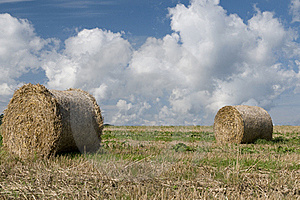 Straw Rolls Royalty Free Stock Photos - Image: 15899388