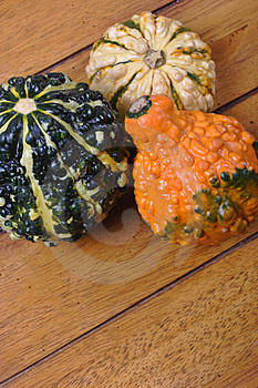 Various Gourds Royalty Free Stock Image - Image: 1592006