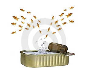 Jumping Out Shoal Royalty Free Stock Photos - Image: 15901868