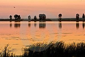 Beautiful And Calm Golden Lake At Sunset Stock Photos - Image: 15909033