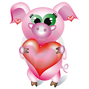 Pretty Pig Stock Image - Image: 15955091