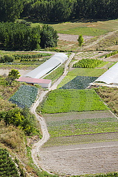 Cultivated Land In A Rural Landscape Royalty Free Stock Photography - Image: 15966377