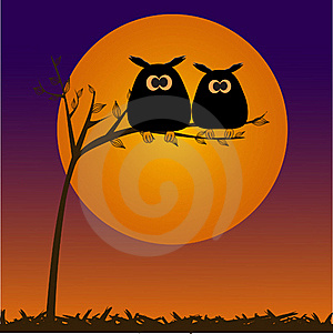 Cute Owls Couple In Love Royalty Free Stock Photos - Image: 15968818