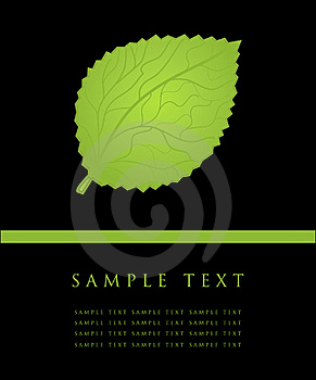 Green Leave Card. Stock Photos - Image: 15969173
