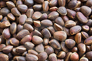 The Background From(of;out Of) Cedar Nut. Royalty Free Stock Photos - Image: 15969228