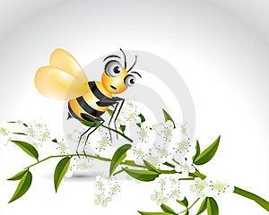 Happy Bee Character Stock Photos - Image: 15971263