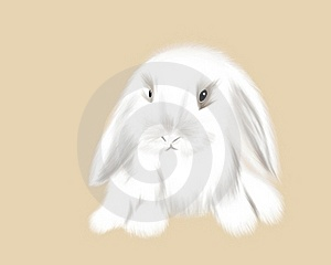 Hand Drawn Cute Rabbit Royalty Free Stock Image - Image: 15972826