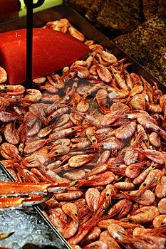 Fresh Shrimps In A Fish Market Stock Photos - Image: 15980223