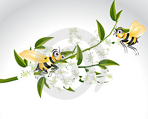 Happy Bee Character Royalty Free Stock Photography - Image: 15981077
