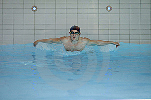 Swimmer Doing Butterfly Stroke Royalty Free Stock Image - Image: 15995226