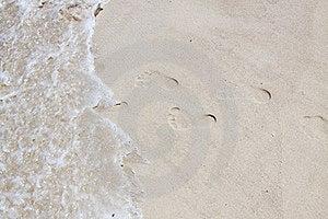 Feet Marks Royalty Free Stock Image - Image: 15996446