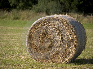 Hay Bail 2 Photos stock