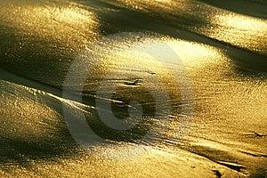 Golden Beach Free Stock Photos