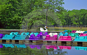 Paddle Boats Stock Photos