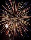 Fireworks Show VII Royalty Free Stock Image