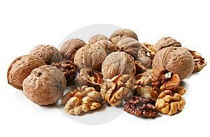 Walnut (Juglans Regia) Stock Images - Image: 16000804