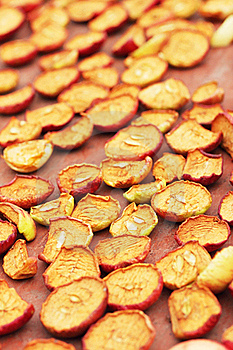 Dried Apples Stock Images - Image: 16007644