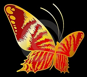 Beautiful Butterfly For A Design Stock Photography - Image: 16027162