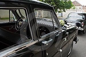 Carros Raros Do Casamento Decorados Com Flores Fotos de Stock Royalty Free - Imagem: 16028598