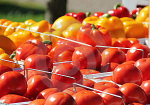 Tomatoes Royalty Free Stock Images - Image: 16042479