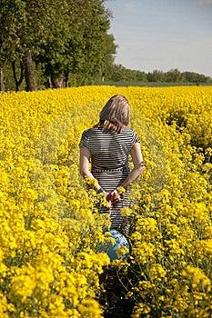 Girl On Canola Field Stock Photos - Image: 16049413
