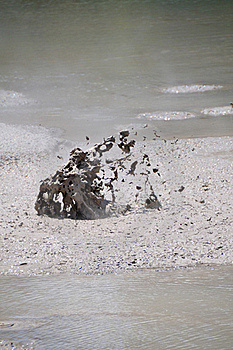 Boiling Mud, Wai-O-Tapu Thermal Wonderland Stock Image - Image: 16054141
