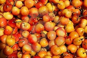 Yellow Cherries Texture Royalty Free Stock Photo - Image: 16068135