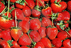 Strawberries Texture Stock Photography - Image: 16068162