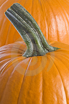 Pumpkins Closeup Royalty Free Stock Photos - Image: 16074888